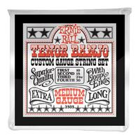 Ernie Ball 2303 Tenor Banjo Strings
